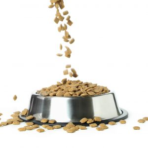 pet-bowl-with-feed-isolated-white-background